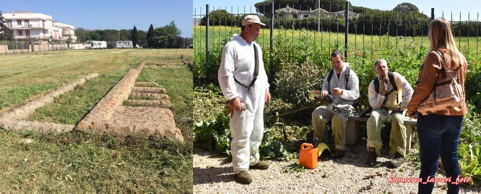 """L'archeologa Burattini: """"Dopo le copiose piogge, al via le ripuliture dei siti archeologici"""""""